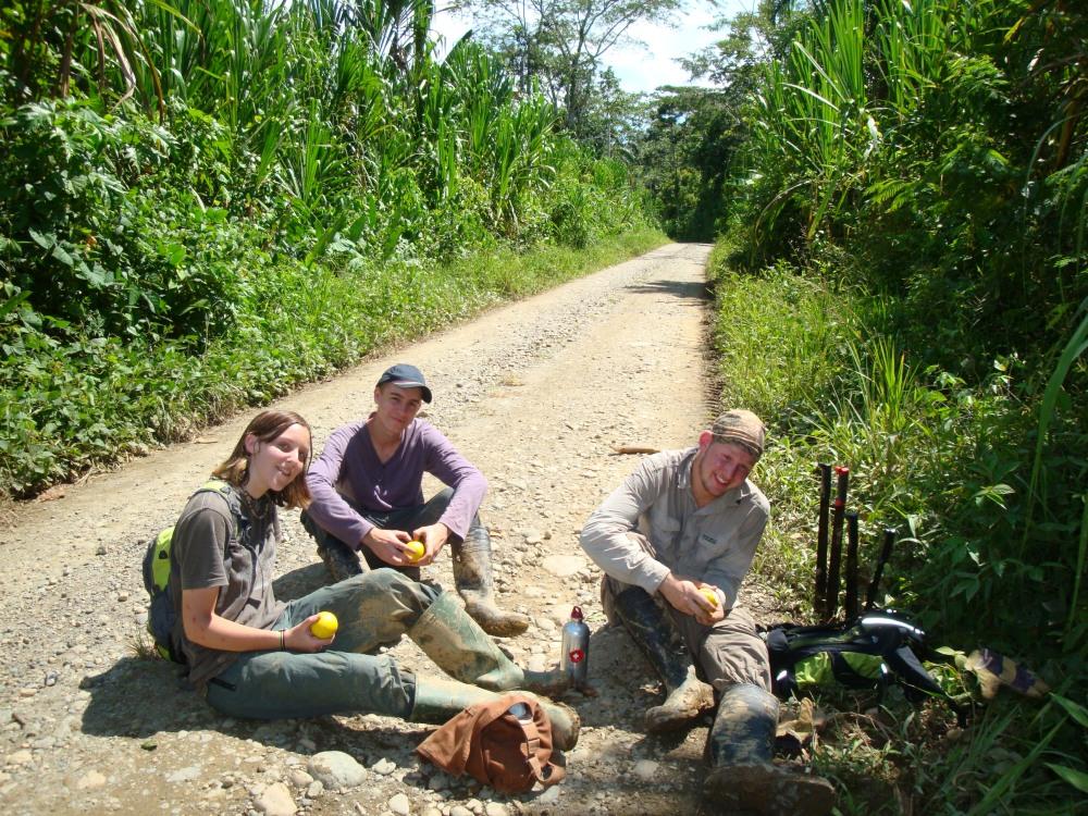 Sitting on a Jungle Road