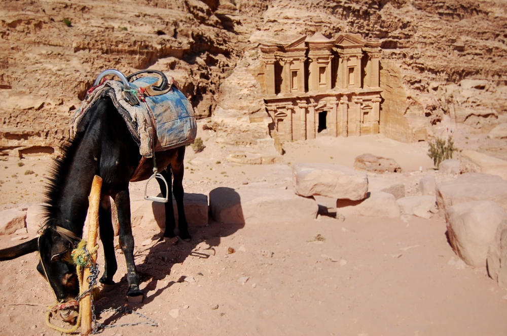 Petra Pony and Monastery