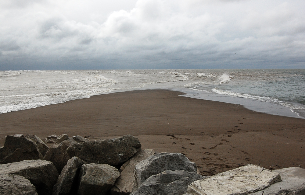 Lake Erie Shore