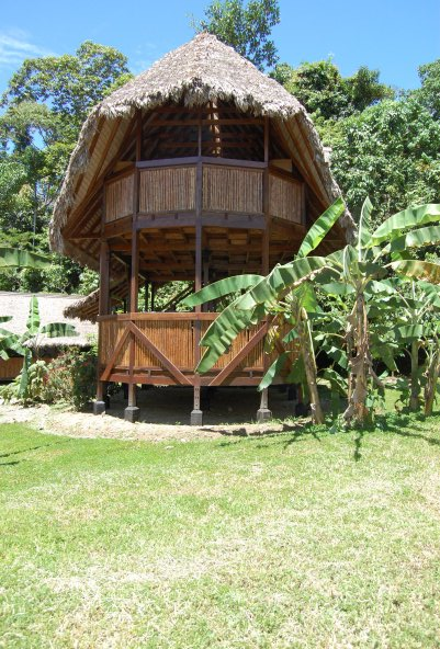 House in the Amazon Rainforest