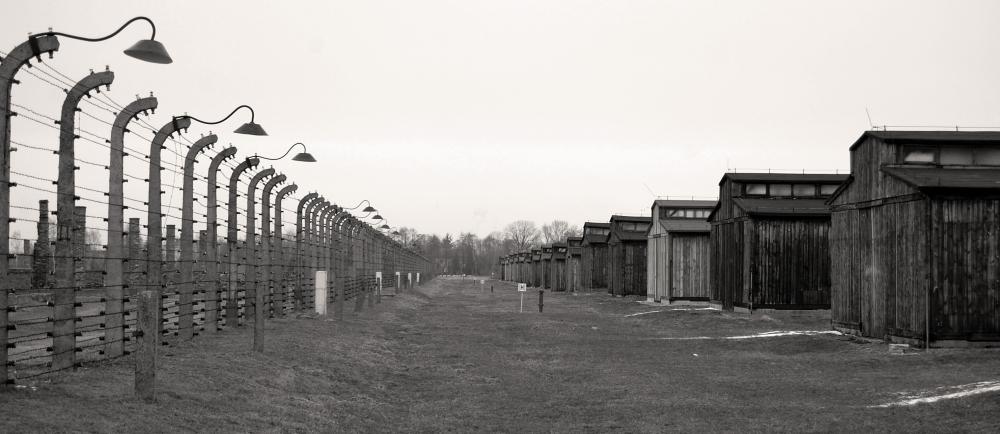 Auschwitz - Birkenau Cabins