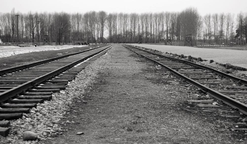 Train Track at Birkenau