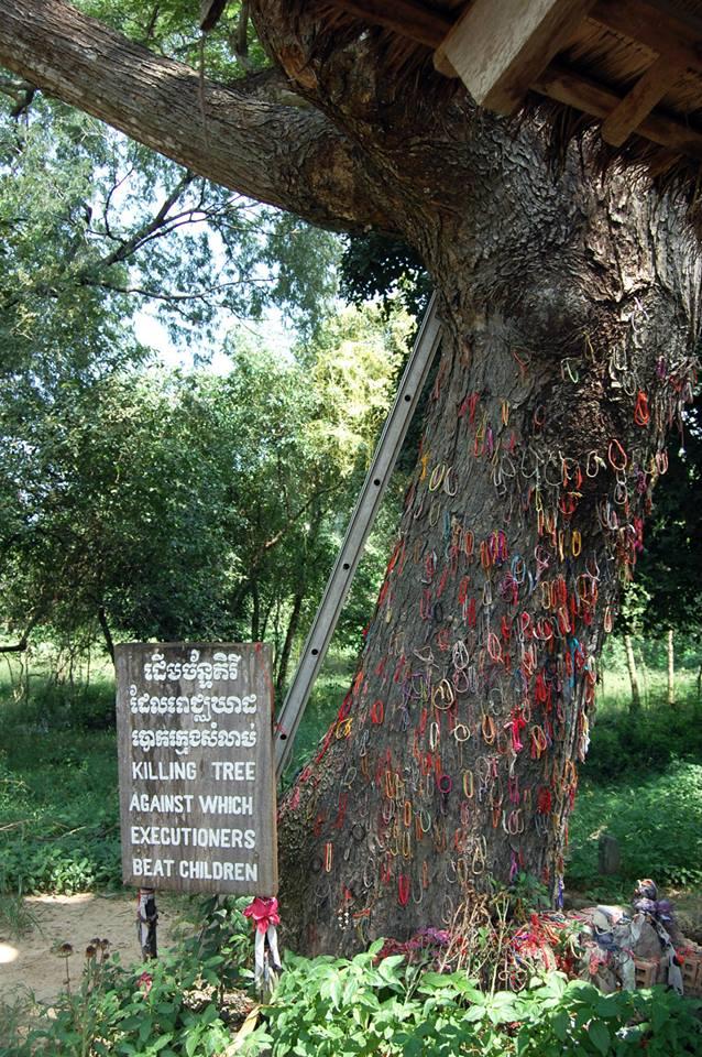 Dead Baby Tree, Chuong Ek, Cambodia