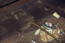 Rats in NY subway