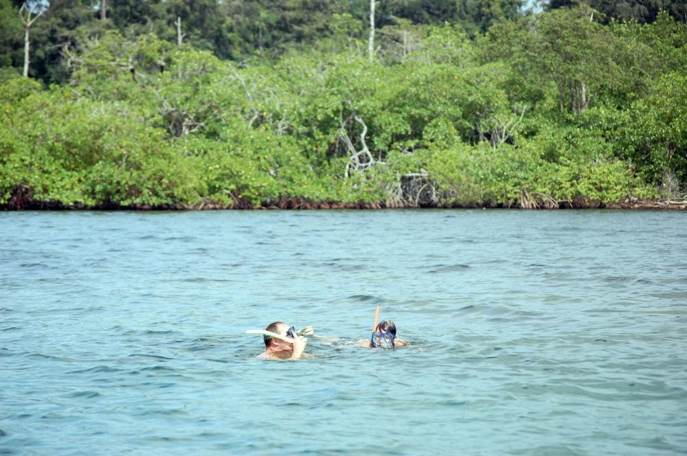 Bocas del Drago snorkelling, Panama