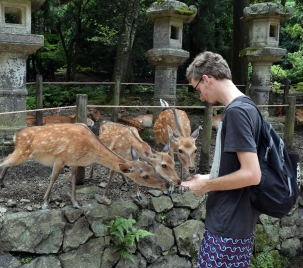 Me Feeding Nara Deer